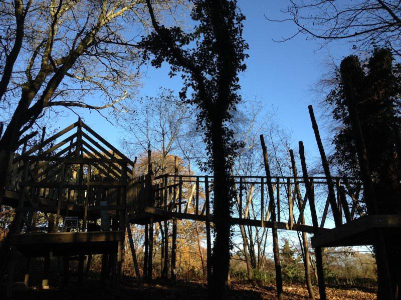 View up to the Ice House within the trees at Culzean Wild Woodland