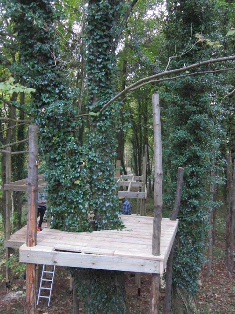 We work with the trees that are already on site at Wild Woodland and build them into the design