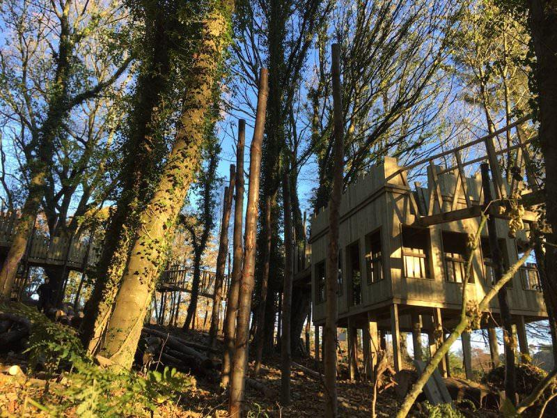 The Extension Tower takes shape within the Culzean Wild Woodland
