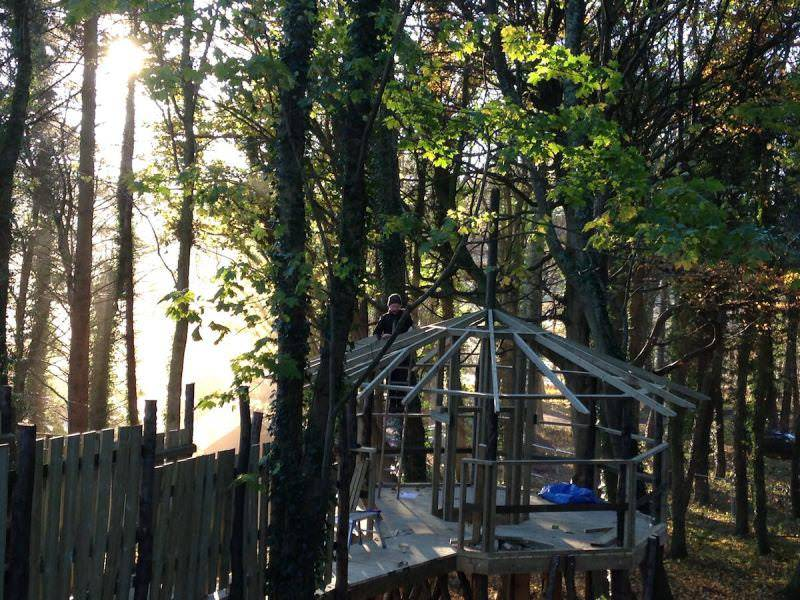 The Mast House Maze takes shape within the trees of Culzean Wild Woodland