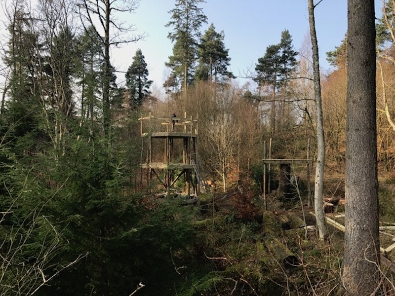 working within the hills and forest of Brodick Castle on the Isle of Arran