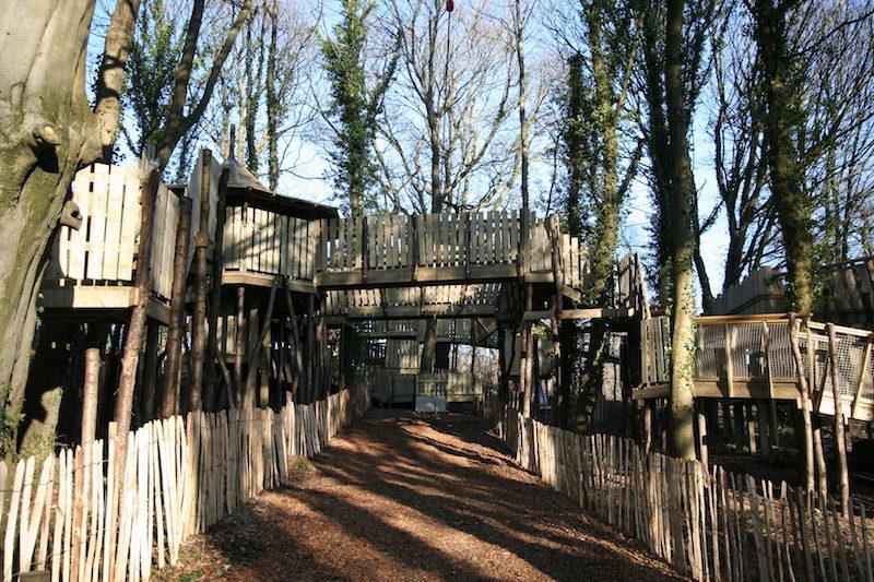 The new Wild Woodland at NTS Culzean Castle 800x533