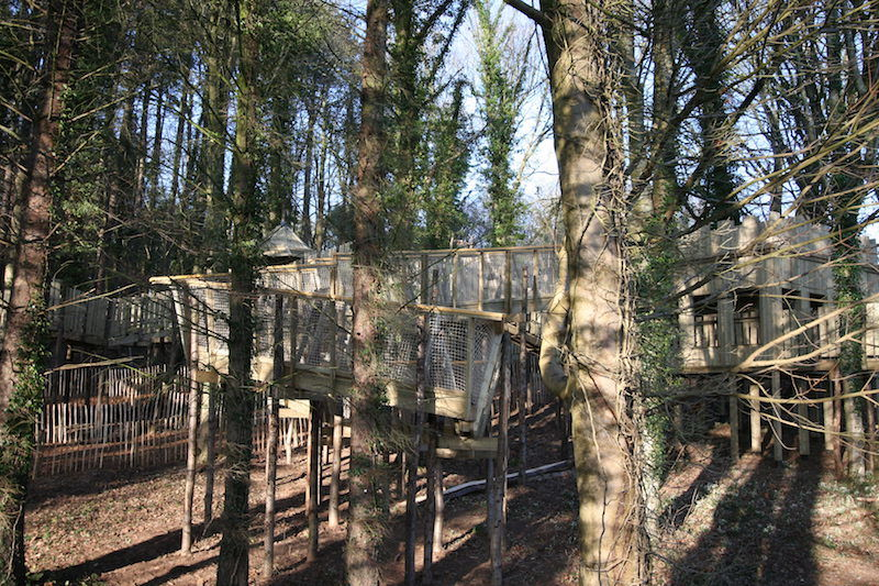 There's walkways amongst the trees throughout the Wild Woodland