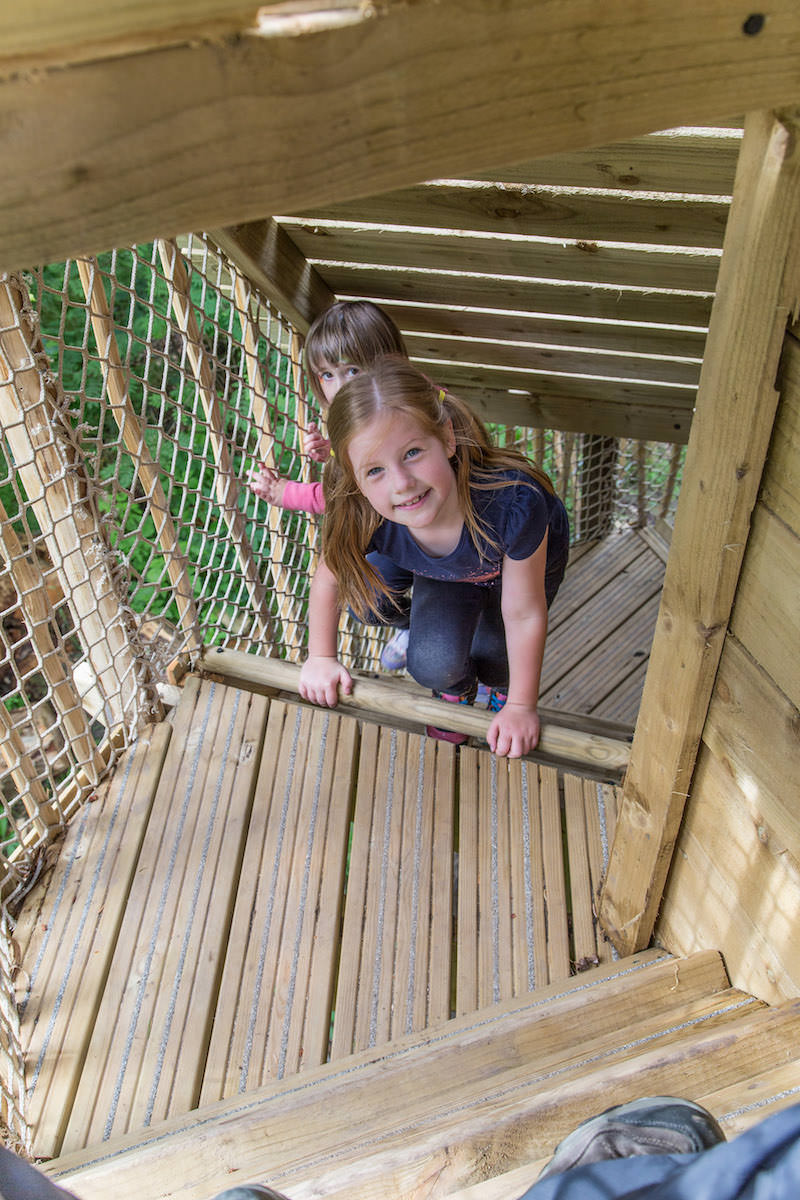 And the climb up into the tower at Brodick Castle Isle Be Wild Adventure Play Arran