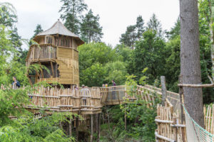 Climbing into Brodick Castle Isle Be Wild Adventure Play Arran