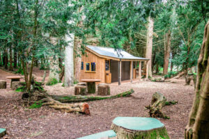 In to the woods - catering hut
