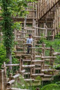 The walk down the steep steps at Brodick Castle Isle Be Wild Adventure Play Arran