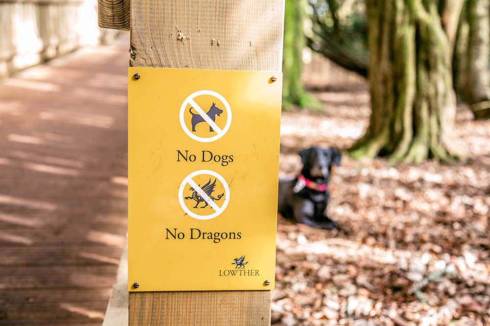 Signage for the Lost Castle - Bad news for Dogs and Dragons