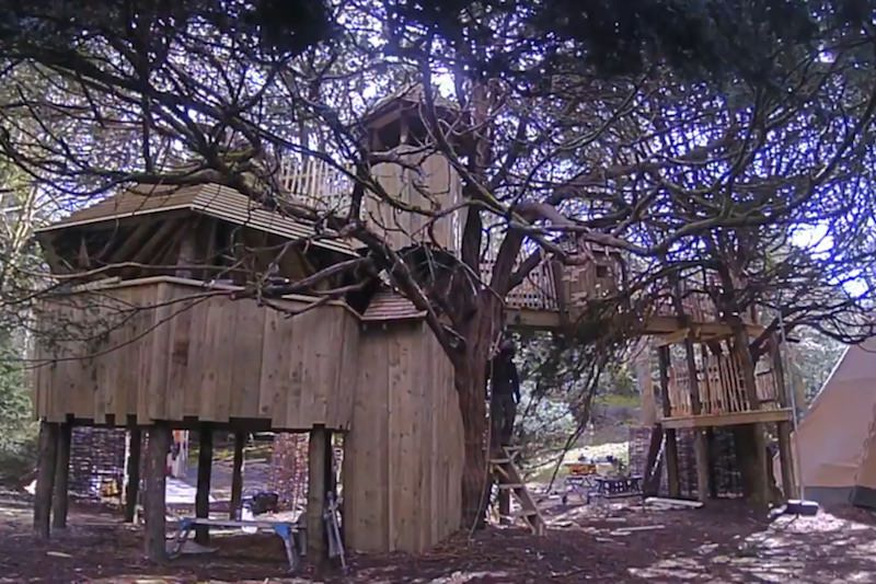 Video still for secret treehouse build