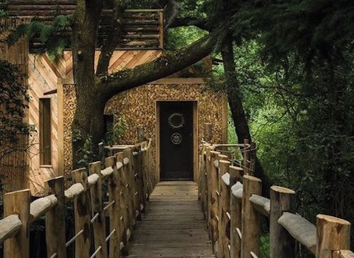 Treehouse Accommodation exterior front door