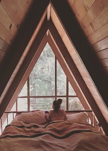 What a view to wake up to inside your treehouse accommodation