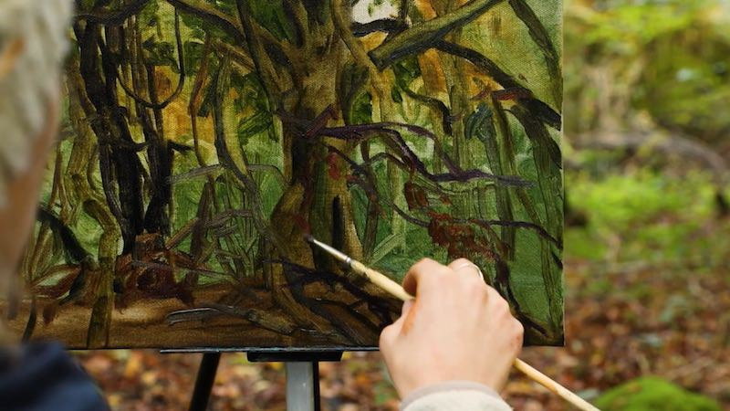 One of the Arborealists at work in Lady Park Wood