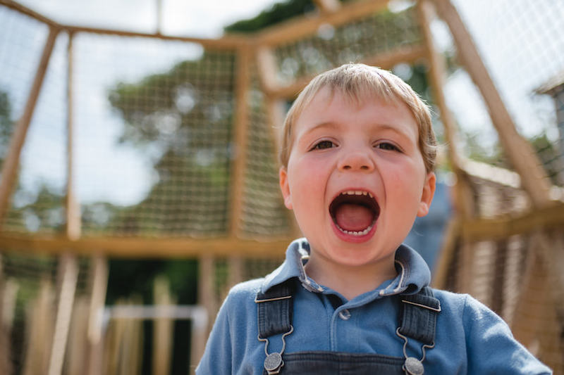 This is the reaction we want at our adventure play at Weehailes by CAP.Co at Newhailes lead image