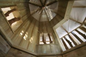 Looking up into the Wild Woodland Tower