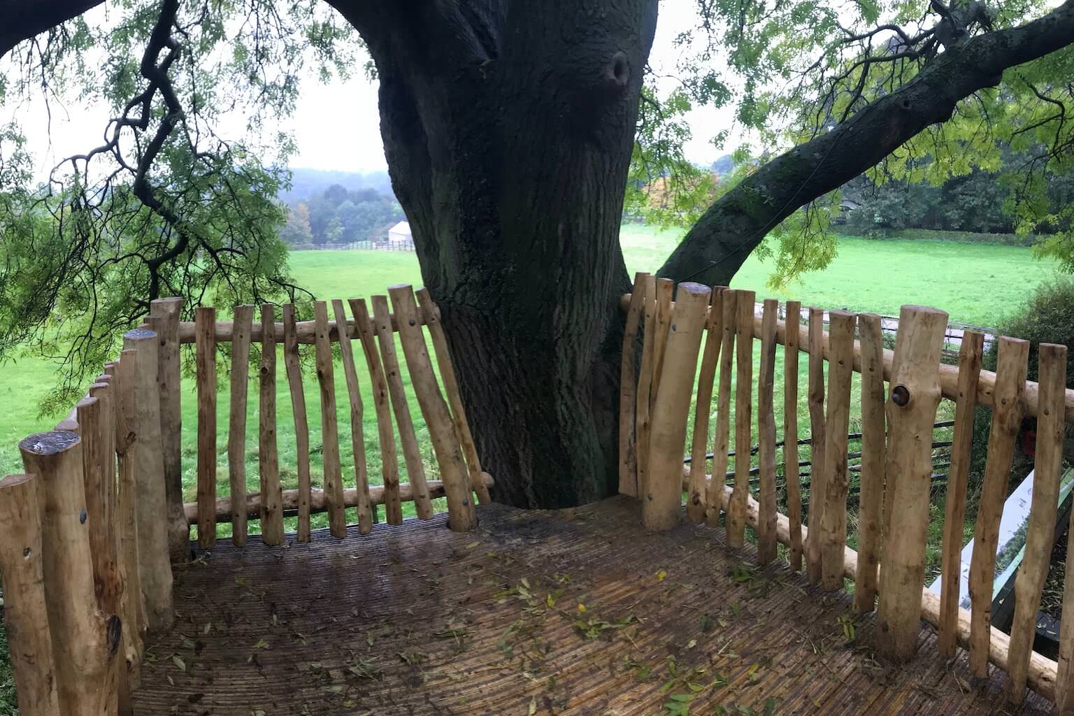 Fountains Abbey Tree Deck by CAP.Co Creating Adventurous Places