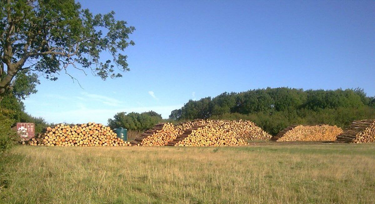 The wood is cut and stacked to begin the drying process