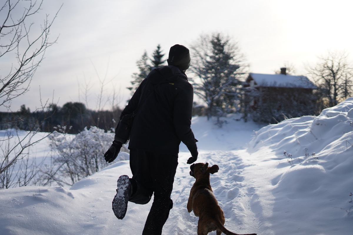 A morning run in the snow for Freddie and Pelly