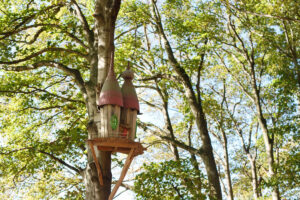The houses high in the trees adding theming to Tumblestone Hollow in Oxfordshire