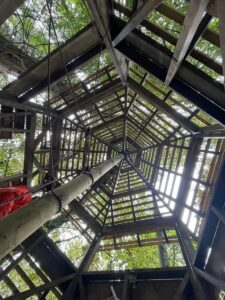 Looking up through the framework